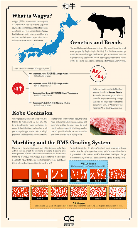 A5 wagyu infographic crowdcow sm